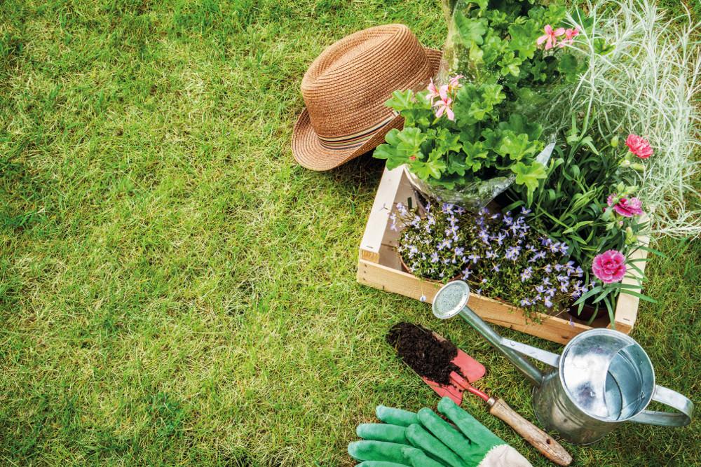 manutenzione estiva giardino: 5 consigli